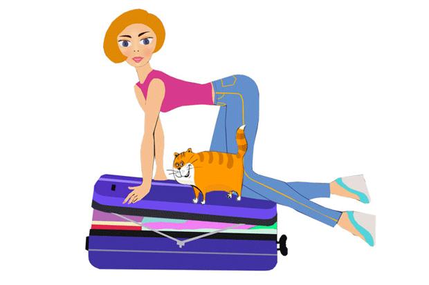 Девушка, чемодан, кот