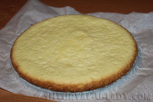 Бисквит для пирожного метеорит