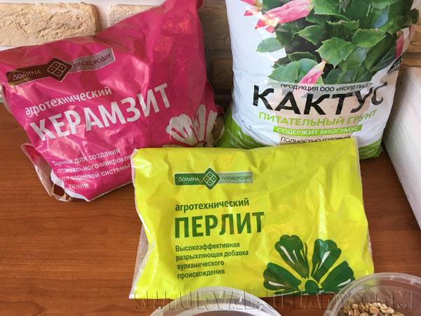 Грунт для суккулентов, кактусов