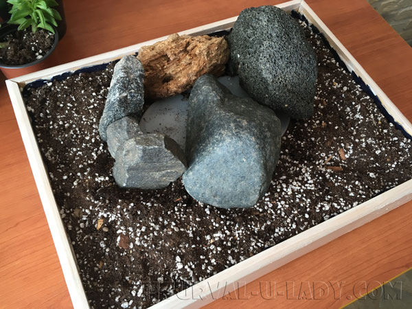Формирование каменной горки для кактусов