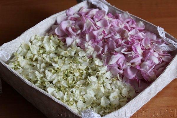 Жасмин и лепестки розы