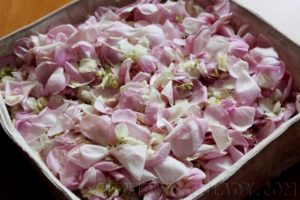 Лепестки розы и жасмина